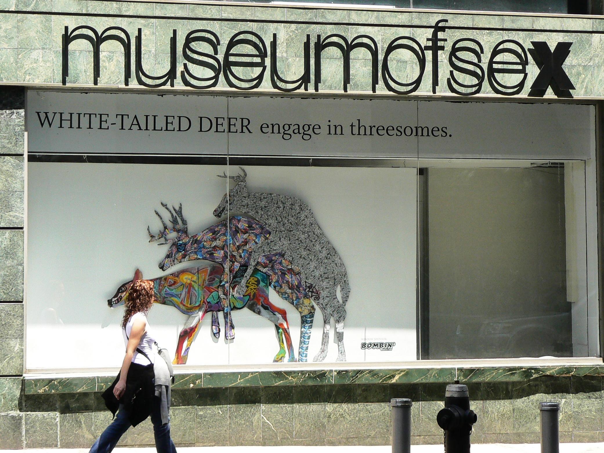 The Museum Of Sex Wanderlust Adventures