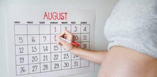 Ovulation Calculator or Calendar