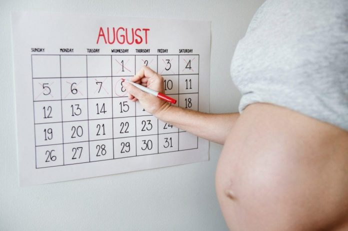 Ovulation Calculator or Calendar