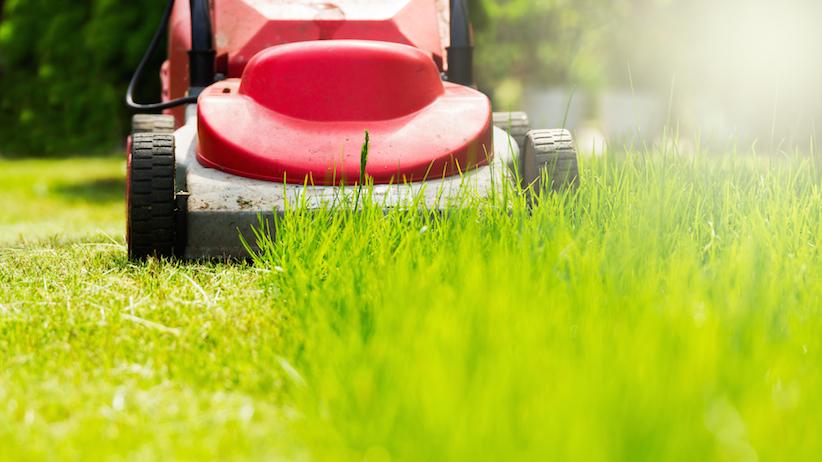 Home Depot lawn mower